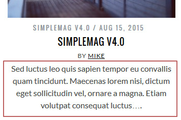 SimpleMag v4.0 manual excerpt post item