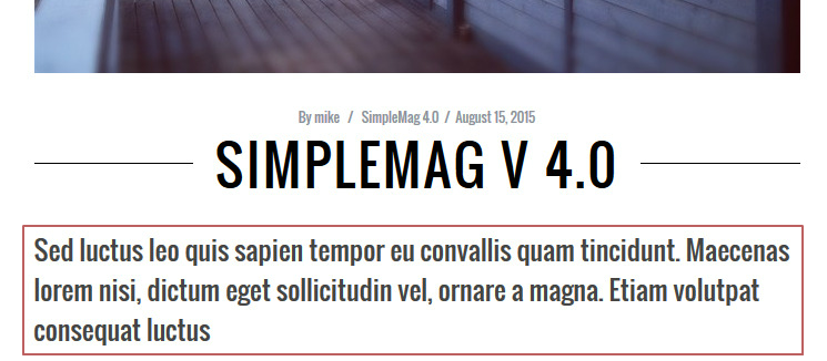 SimpleMag v4.0 manual excerpt single post